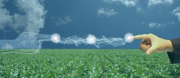 Iot, Internet de cosas, concepto de la agricultura, uso robótico elegante del ai de la inteligencia artificial para la gestión, c foto de archivo libre de regalías