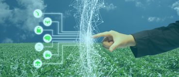 Iot, Internet delle cose, concetto di agricoltura, uso robot astuto di ai di intelligenza artificiale per gestione, controllo, mo fotografia stock libera da diritti