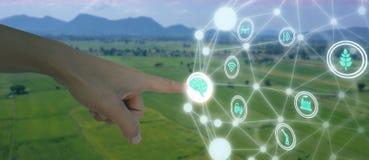 Iot, internet rzeczy, rolnictwa pojęcie, Mądrze Mechaniczny sztucznego intelligence/ai use dla zarządzania, kontrola, monitorin obrazy stock
