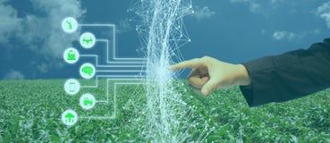 Iot, Internet von Sachen, Landwirtschaftskonzept, intelligenter künstliche Intelligenz ai-Robotergebrauch für Management, Steueru lizenzfreie stockfotografie