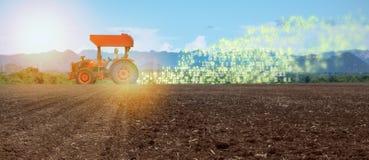 Iot smart lantbruk, jordbruk i bransch 4 0 teknologi med begrepp för konstgjord intelligens och för lära för maskin det hjälper t royaltyfria bilder