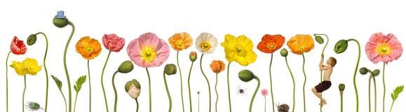 άνοιξη λουλουδιών παιδ&iota ελεύθερη απεικόνιση δικαιώματος