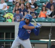 Iowa Cubs Stock Photography
