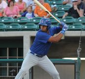 Iowa Cubs Royalty Free Stock Photography