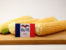Iowa flag on a wooden panel with corn isolated on a white backgr royalty free stock images