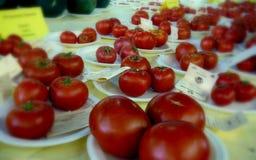 Iowa stanu jarmarku pomidory fotografia royalty free