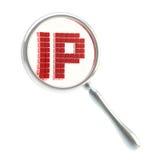 IP bajo la lupa aislada Foto de archivo libre de regalías