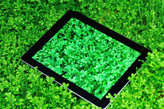 Ipad on green selaginella uncinata Stock Image