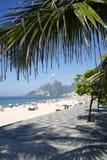 Ipanema Beach Rio de Janeiro Arpoador Palm Tree stock photo