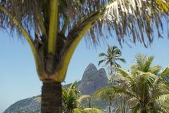 Ipanema Beach Rio de Janeiro Brazil Palm Trees Stock Photos