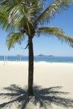 Ipanema Beach Rio de Janeiro Palm Tree Shadow Royalty Free Stock Image