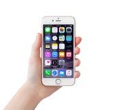 IPhone isolato 6S Rose Gold della tenuta della mano della donna Immagine Stock