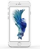 IPhone 6s 2015 de Apple fotografía de archivo libre de regalías