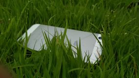 Iphone. 5s on a grass stock image