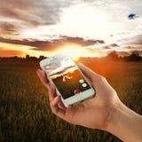 Iphone 5s med Pokemon går app Royaltyfri Bild