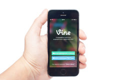 IPhone 5S with Vine Royalty Free Stock Images