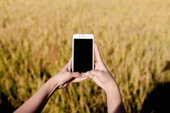 IPhone-Schwarz-Schirm auf Wiese und Berg lizenzfreie stockbilder