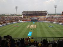 IPL Cricket Royalty Free Stock Photography