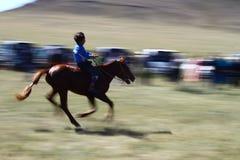 Ippica al festival di Naadam con un bambino in Mongolia Immagine Stock