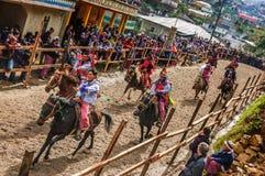 Ippica di Ognissanti, Todos Santos Cuchumatan, Guatemala Fotografia Stock Libera da Diritti