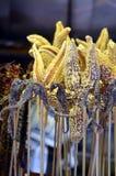 Ippocampi fritti - squisitezza cinese alla via di Wangfujing in Cina Fotografia Stock Libera da Diritti