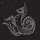Ippocampo o creatura mythologic di kelpie Schizzo su un fondo nightsky Fotografia Stock