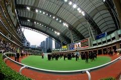 Ippodromo dello stagno di Sha, Hong Kong Fotografia Stock Libera da Diritti