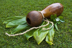 Ipu Heke Hawaiian Double Gourds Drum Stock Photo