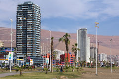 Iquique, Cile Immagini Stock Libere da Diritti