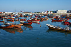 Iquique Harbour Royalty Free Stock Image