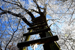 Ir acima! Foto de Stock