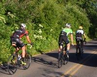Ir aos ciclistas da estrada de Sun Fotografia de Stock Royalty Free