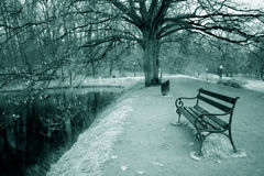 IR bench in park Stock Photography