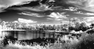 Ir Canvas royalty free stock images