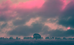 Ir landscape Royalty Free Stock Images