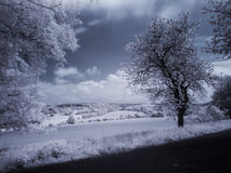 IR summer landscape Royalty Free Stock Image