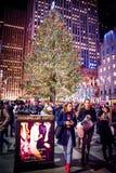 Ir ver a árvore Fotos de Stock Royalty Free