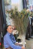 Irański sprzedawca sprzedaje pawich piórka przy Vakil bazarem, Shiraz, I Zdjęcie Stock