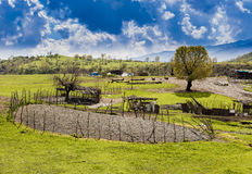 Iraaks platteland in de lente stock foto's