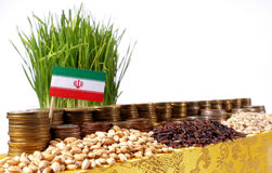 Iran flag waving with stack of money coins and piles of wheat Stock Photography