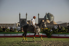 Iran, Isfahan. A man play polo match in Imam Square, Iran 2016 Royalty Free Stock Photography