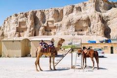 Iran. My travel Journey through beautiful Iran Stock Photography