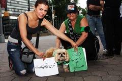 iran nya protester york Royaltyfri Fotografi