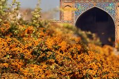 iran Teil der Moschee an Quadrat Naqsh-e Jahan in Isfahan 17. Jahrhundert Altes Persien lizenzfreie stockfotografie