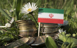 Iranian flag with stack of money coins with grass. And flowers Stock Photo