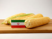 Iranian flag on a wooden panel with corn isolated on a white bac. Kground Stock Photos