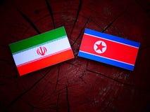 Iransk flagga med den nordkoreanska flaggan på en trädstubbe Royaltyfri Fotografi