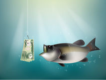Iraqi dinar money paper on fish hook. Fishing using Iraqi dinar money cash as bait, Iraq investment risk concept idea Stock Image