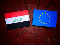 Iraqi flag with EU flag on a tree stump isolated. Iraqi flag with EU flag on a tree stump Stock Photos