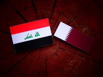Iraqi flag with Qatari flag on a tree stump isolated. Iraqi flag with Qatari flag on a tree stump Stock Photo